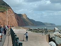 Sidmouth Cliffs (East)
