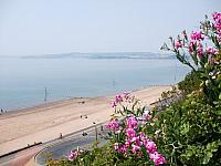 Exmouth Beach and Exe Estuary