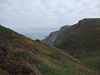 Near Higher Sharpnose Point